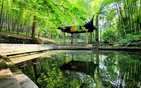 Обои деревья, пруд, парк, сад, Китай