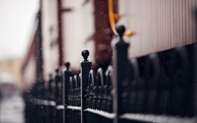 Обои город, улица, забор