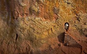 Обои скала, ступени, Эфиопия, Лалибела