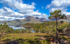 Картинка облака, деревья, горы, берег, бухта, Шотландия, залив