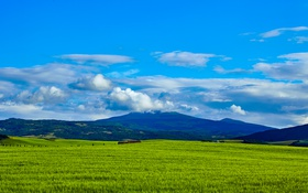 Обои зелень, небо, трава, облака, горы, поля, простор