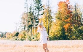 Картинка поле, девушка, деревья