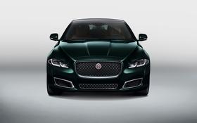 Картинка фон, Jaguar, ягуар, X351