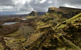 Обои дорога, горы, тучи, озеро, дерево, Шотландия