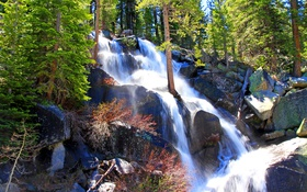 Обои лес, деревья, брызги, камни, водопад, Калифорния, США