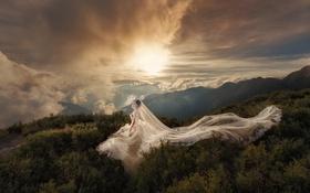Картинка небо, девушка, облака, платье, свадебное
