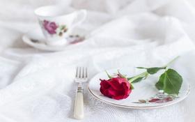 Картинка стиль, роза, тарелка, чашка, вилка, скатерть