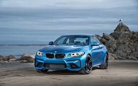Обои камни, океан, берег, чайка, BMW, Coupe