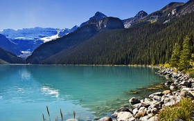Картинка лес, небо, солнце, деревья, горы, озеро, камни