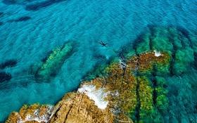 Обои вода, скалы, ныряльщик, Испания, Средиземное море, Природный парк Кабо-де-Гата