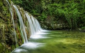 Обои лес, водопад, Италия, Veneto, Mondrago