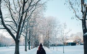 Картинка зима, дорога, девушка, снег, деревья, шапка, шарф