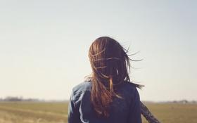 Картинка девушка, ветер, шатенка