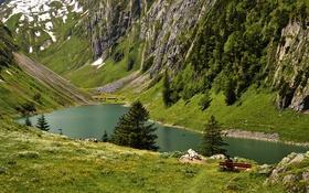 Картинка деревья, горы, озеро, камни, скалы, вид, лавочка