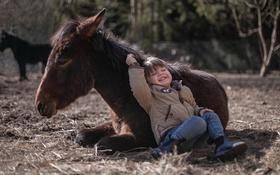 Картинка фон, мальчик, пони