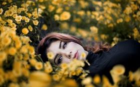 Картинка взгляд, девушка, цветы, поза, портрет, лежит