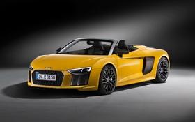 Обои Audi, ауди, кабриолет, Spyder