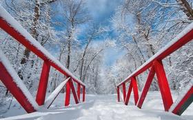 Обои зима, снег, парк, мостик