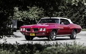 Обои кабриолет, Pontiac, GTO, 1970, понтиак, Convertible
