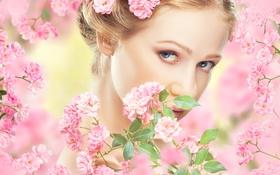Картинка взгляд, листья, девушка, цветы, ветки, лицо, весна