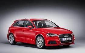 Обои фон, Audi, ауди, Sportback