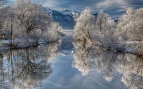 Картинка зима, иней, деревья, горы, озеро, Германия, Бавария