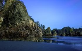 Обои Ruby Beach, США, Вашингтон, вечер, скалы, камни, деревья