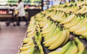 Обои желтые, бананы, много, магазин