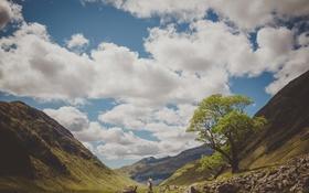 Картинка зелень, небо, природа, холмы, деревья, влюбленные, облака