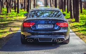 Обои машина, авто, Audi, Ауди, фонари, фотограф, auto