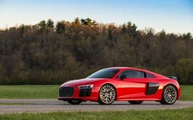 Обои Audi, ауди, суперкар
