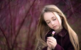 Картинка роза, девочка, цветочек