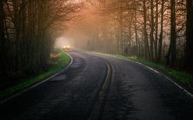 Обои дорога, машина, туман, утро