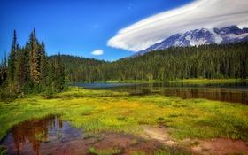 Картинка лес, небо, трава, облака, деревья, горы, озеро