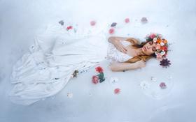 Картинка девушка, цветы, поза, фон, венок