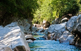 Обои лес, ручей, камни, Швейцария, Verzasca Valley