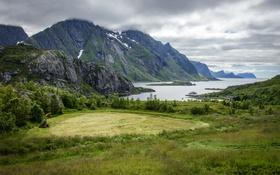 Обои море, горы, бухта, Норвегия, архипелаг, Lofoten