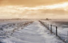Обои поле, снег, Исландия