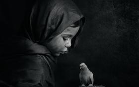Картинка девочка, черно-белое, птичка