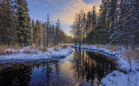 Картинка зима, снег, деревья, река
