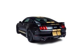 Обои фон, Mustang, Ford, Shelby, мустанг, форд, GT-H