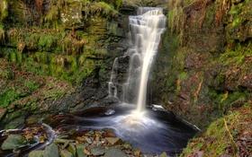 Обои лес, скала, камни, Англия, водопад, мох, Lead Mines Clough Waterfall