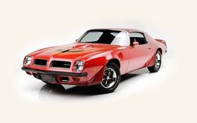 Обои белый фон, Pontiac, понтиак, Firebird, 1974, фаерберд