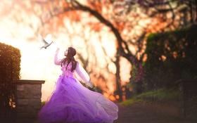 Обои голубь, платье, девочка, Flight of the Dove