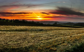 Обои поле, закат, природа