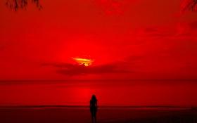 Обои море, девушка, облака, закат, берег, вечер, силуэт