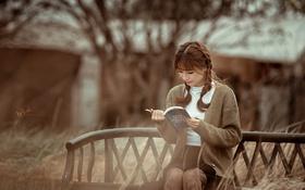 Картинка девушка, книга, азиатка, сидит, читает