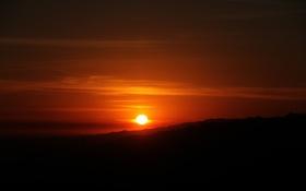 Обои небо, солнце, закат, силуэты