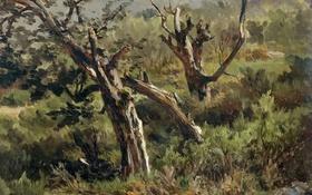 Обои трава, пейзаж, горы, дерево, картина, склон, Карлос де Хаэс