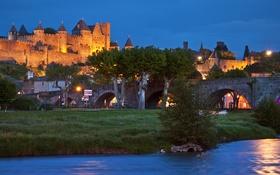 Картинка деревья, мост, огни, река, замок, Франция, вечер